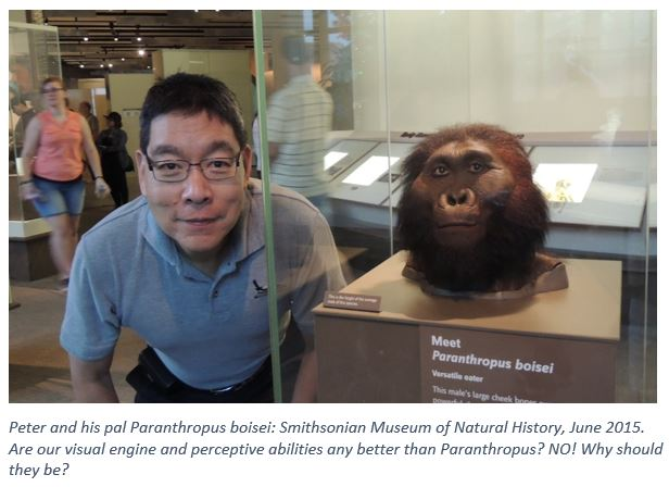 Pete and Paranthropus boisei.Updated.jpg